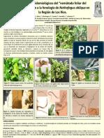 Nemátodo Foliar Del Roble, Aspectos Epidemiológicos.