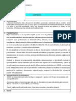 Informe de Practica Profesional i Dj 2019