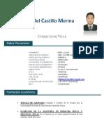 Cv- Del Castillo 2018