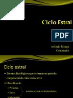 cicloestral