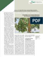biodiversidad en los cafetales en Mexico.pdf