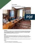 Dezbatere Proiect Lege Art. VII, Pl-x 166:2018