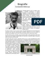 Marian Costei-Biografie Constantin Brâncuși