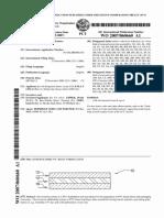 WO2007060660A1.pdf
