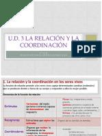 3. La Relacion y La Coordinacion