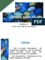 27 Lipidos Simples