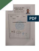 MEDIOS PROBATORIOS - CLAUDIA FJS 72-80.docx