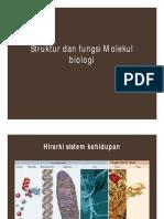 Struktur dan Fungsi Molekul Biologi