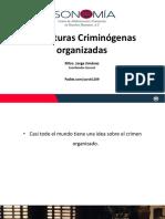 1. Estructuras Criminógenas Organizadas