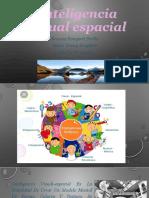 Presentacion Final de Inteligencia Visual Espacial Diapositiva,,,,,
