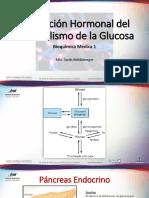 10. Regulación Hormonal Del Metabolismo