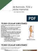 Estado de Nutricion, TCSC y Glandulas Mamarias