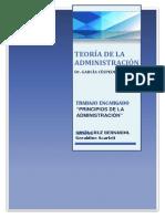 Teoría de La Administración Grupal(2)