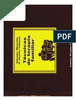 Salvador Minuchin - Técnicas de Terapia Familiar CAP. 2.pdf
