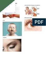 5 ACCIONES INVOLUTARIAS.docx