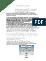 cominicacion.pdf
