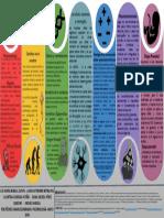 Entrega Final. Infografia psicobiologia