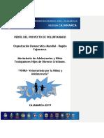 proyecto voluntariado.docx