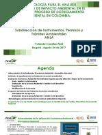 Metodología para el Análisis Económico Ambiental - Dra. YOLANDA CASALLAS - ANLA.pptx