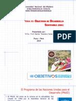 Tema 01. Objetivos Del Desarrollo Sostenible