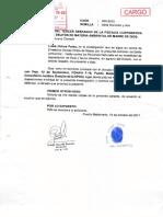 SPDA asume el patrocinio de Luisa Ochoa