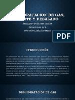 DESHIDRATACION de aceite gas y desalado