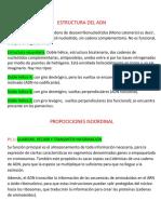 JUAN BUSTAMANTE Estructura Del Adn