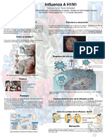 Influenza AH1N1 (1)