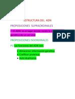 Victoria Sanchez 9C  Estructura Del Adn