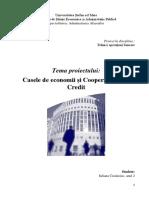 Casele de Economii Și Cooperativele de Credit