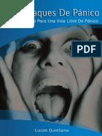 ellibroaltoataquesdepaniconiunarevision-131004151900-phpapp01