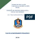Plan de Acompanamiento Pedagogico Igv 2018