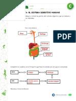 articles-22973_recurso_pauta_doc.doc