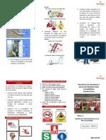 Triptico de SSP.PDF