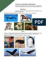 Clasificación de Los Animales Vertebrados