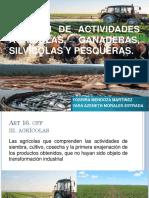 Regimen de Actividades Agricolas, Ganaderas, Silvicolas