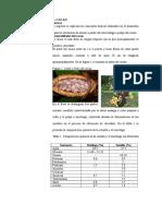 Azúcar en el cacao- monografia (1).docx