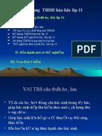 Tap Huan Ve Thiet Bi Day Hoc Lop 11