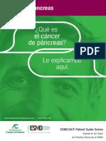 Qué es el  Cancer de Pancreas Guia Para Pacientes