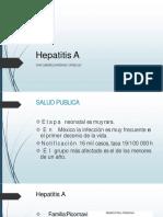 Hepatitis 140707055832 Phpapp01 Convertido