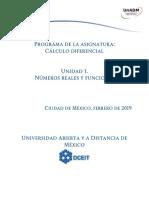 Unidad 1 Numeros Reales y Funciones Dcdi Ds 2019 1