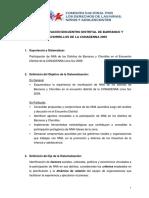 SISTEMATIZACIÓN BARRANCO Y CHORRILLOS.pdf
