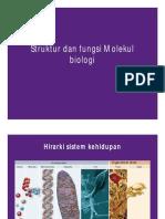 Struktur dan fungsi Molekul Biologi 2
