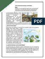ANALISIS E INVESTIGACION DEL ECOSISTEMA.docx