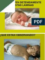 313183989 La Respiracion Es El Intercambio de Oxigeno y PDF
