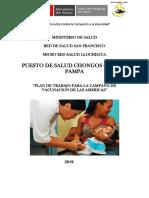 Campaña de Las Americas Chongos Carmen Pampa