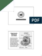 Revision Modulo 2[Version Para Imprimir]