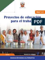 proyecto-ept 2019 con desempeños.pdf