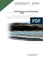 P.T.PALMA DE ACEITE