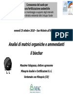 Valagussa_biochar.pdf
